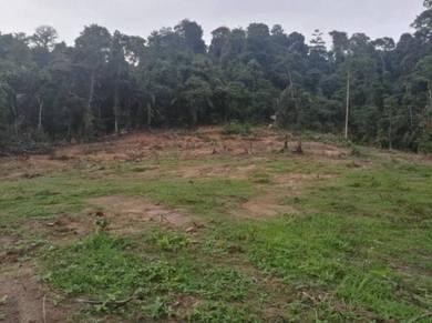 Tanah 1 ekar, sesuai kebun durian, dkt. hutan, Kg.Kering, Tiroi, Labu