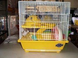 604hc- sangkar hamster baru