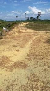 Land 50 Acres in Keratong Pahang