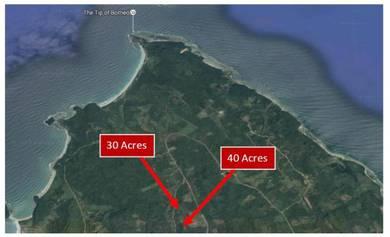 70 Acre Palm Oil Estate In Kudat, Sabah