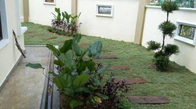 Tanam rumput dan lanskap halaman rumah