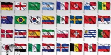 World Cup Flag (14x21cm)