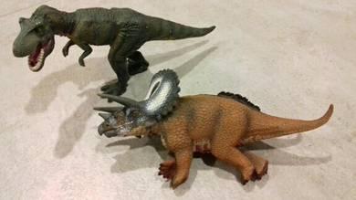 Tyrannosaurus Rex and Triceratop Dinosaur