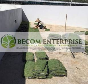 Promo rumput grass landskap hiasan taman rumah