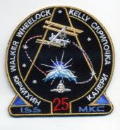 NASA International Space Expedition 25 Patch
