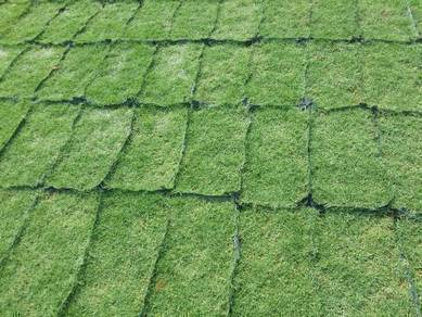 Tanam Rumput Potong pokok Trimm Artificial ell