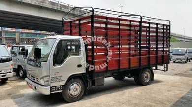 ISUZU NPR70 Wooden Cargo 17 Ft 7500Kg NEW 2019