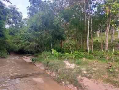 Tanah Kebun Durian & Buah Tepi Sungai Cantik 30 Min Kuala Lumpur