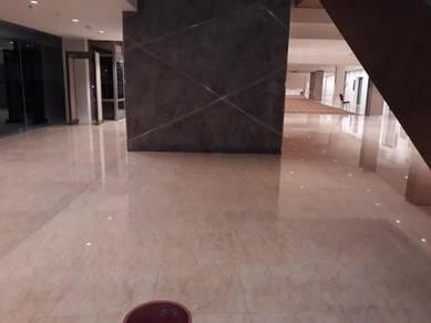 Tu{ Marble Polish Parquet Painting Carpet Wash}