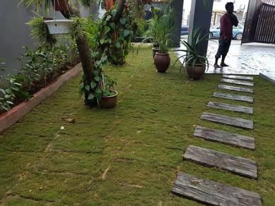 Tanam Rumput pokok tiruan Pokok Landscape