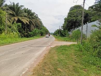 Tanah 41 ekar Jelebu Negeri Sembilan Cantik Untuk Durian Musang King