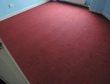 Best Office Carpet Roll With Install -753r5