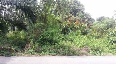 Superb 1acre Land in Klang For Sale. Good Buy!!