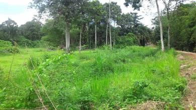 Tanah Pertanian, Machang Bubok, Bukit Mertajam