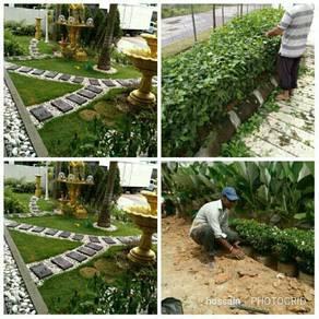 Gardening+landscapes+Tanam rumput