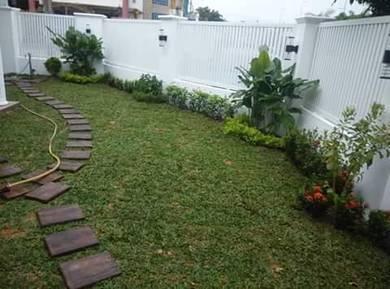 Pokok potong(+(tanam rumput)landscap