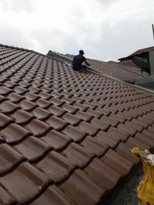 Pakar bumbung bocor
