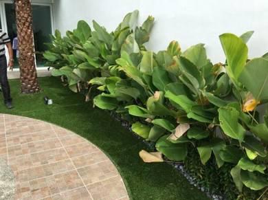 Grass installation with garden package