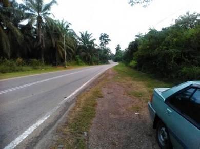 Tanah Sawit Simpang Durian Jelebu