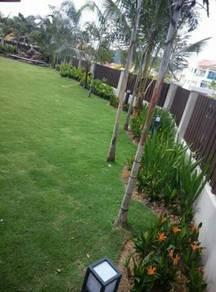 Rumput dan tanam tumput