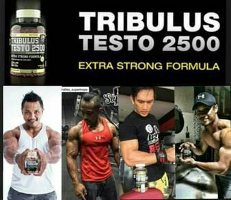 Tribulus testo(60biji)