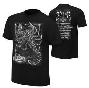 WWE WWF T Shirt (Sting Hall Of Fame Black)