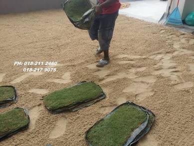 Tanam Rumput:POTONG POKOK rumput tiruan