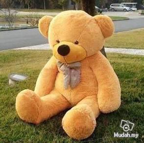 Big Lovely teddies cute giant Teddy bear soft toy