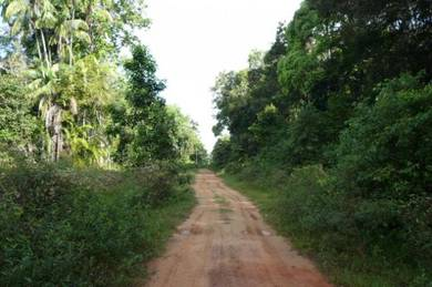 Beach land (direct beach frontage) for sale, Kuala Rompin, Pahang
