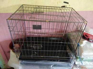 Kandang Kucing and Bekas Makanan