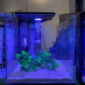Aqurium tank (Marine or Fresh water)