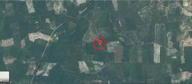 Tanah Pertanian 5.9 ekar Lebu, Bentong Pahang