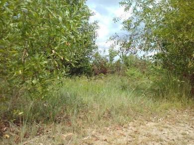 Lot Tanah di Tikam Batu Sungai Petani