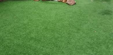 Rumput karpet Tiruan