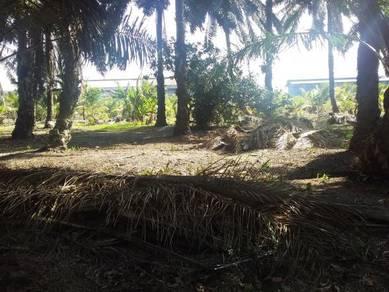 Tanah freehold Non Bumi Lot Mukim Pt Bakar Muar