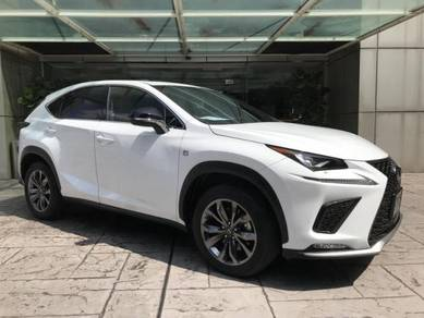 Recon Lexus NX 300 for sale