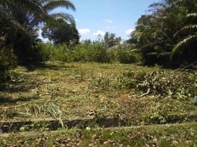 Bungalow Land at Mahkota Hills (Bandar Akademia) 4000sf