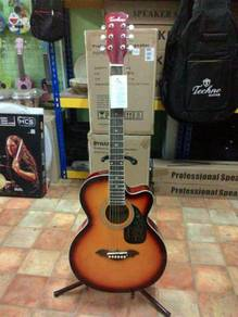 Techno Sunburst Acoustic Guitar - DM 1239 SB