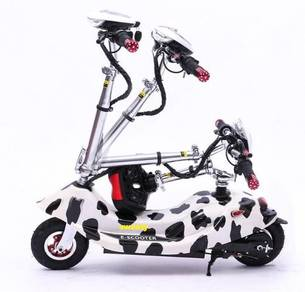 Electric scooter 250w latest model (black)