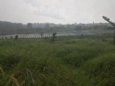 Sungai Tiram Agriculture Land For Sale