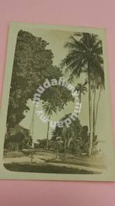 Postcard Changi View 1900s No 507 RARE