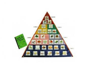 Food Pyramid Chart (U011)