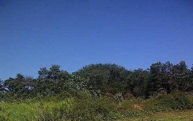 21 acre agriculture land, Jelebu