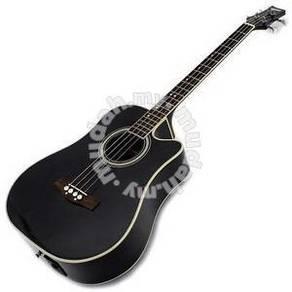Ashton acoustic bass