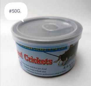 Canned Cricket Cengkerik Dalam Can 50gram Aquarium