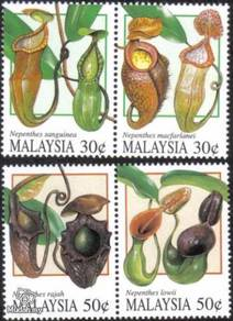 Mint Stamp Pitcher Plant Malaysia 1996