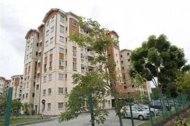 Fully Furnished Danaumas Apartment for Rent