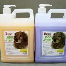 Bengy Shampoo 4 Litre