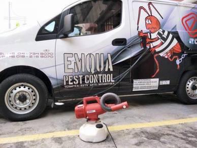 Pest Control / Anai-anai / Serangga / Nyamuk