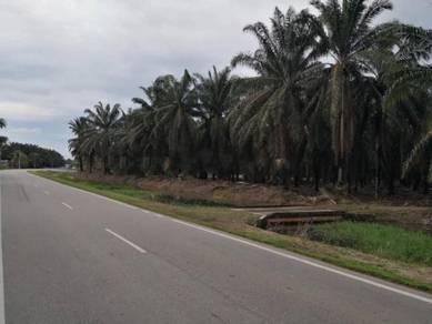 4.56 Acre Main Road Frontage Land Jalan Parit Yaani Batu Pahat Johor